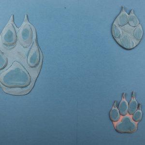 """Обложка """"Следы животных. Следы волка, лисицы, собаки"""""""